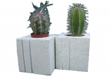 Cache pots cactus